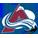 créer un forum : ligue simule NHL15 Logo_d29