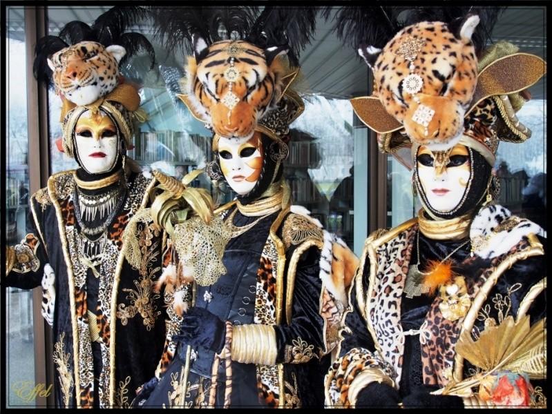 Carnaval Vénitien d'Annecy 28 février-1er mars + Photos P3010211