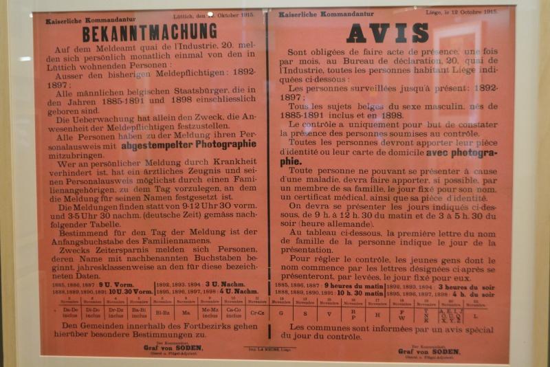 visite expos 14-18 à Liège le 27.12.2014 - Page 9 14-18195