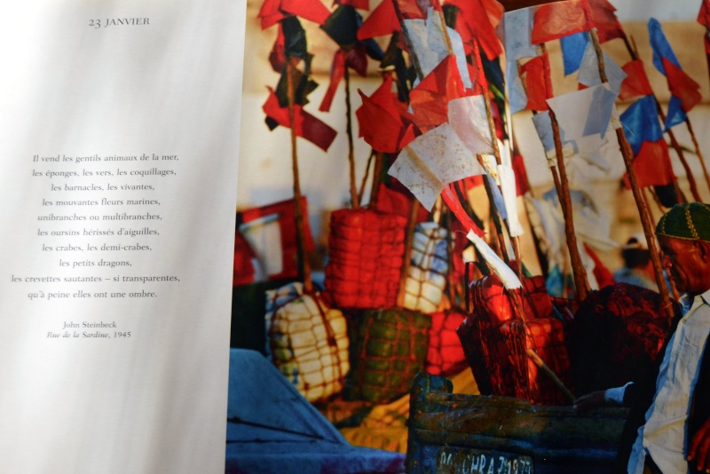 Poèmes de la Mer - Page 3 Poymes22