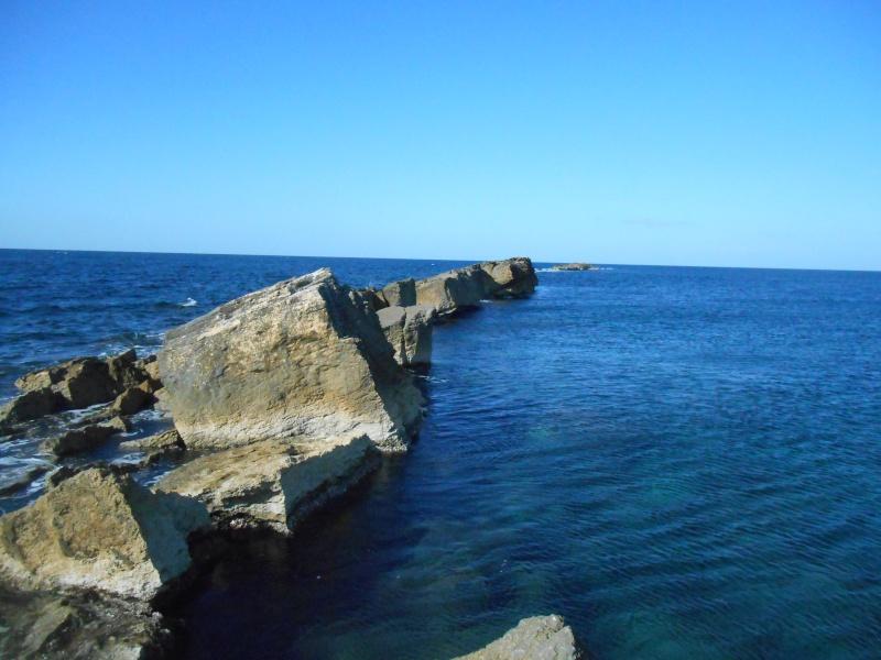 Sicilia occidentale, terra, mare, natura e cultura - Pagina 4 02210