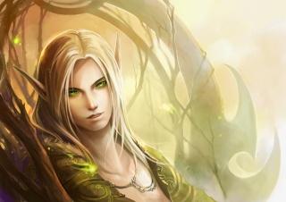 Les Races de BladeOnline Elf_by10