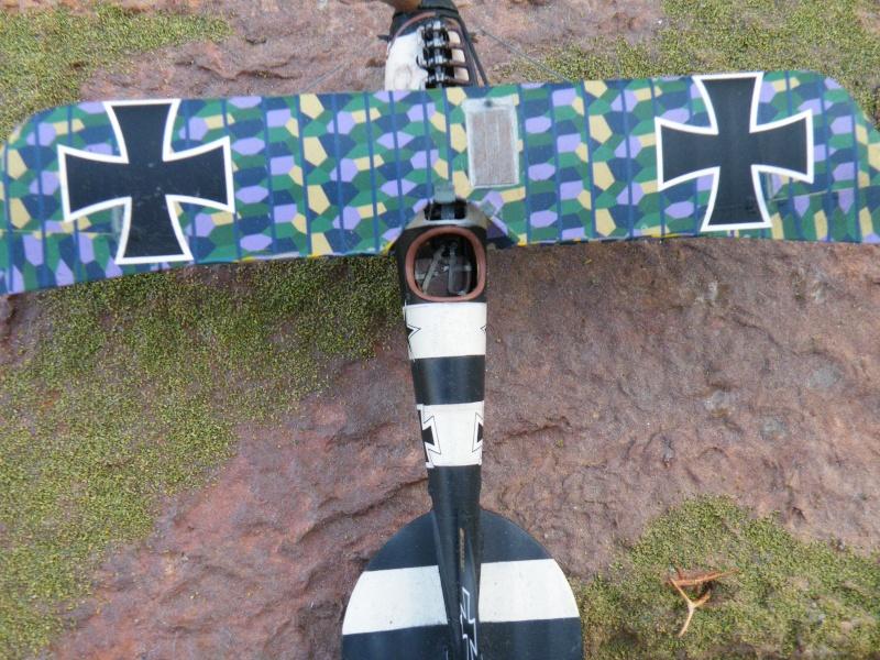 le vol de l albatros Dscf5111