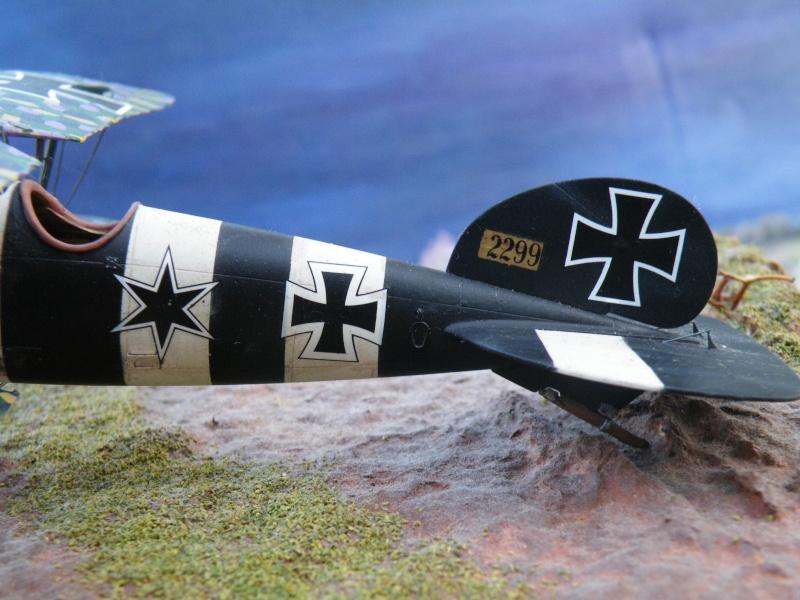 le vol de l albatros Dscf5113