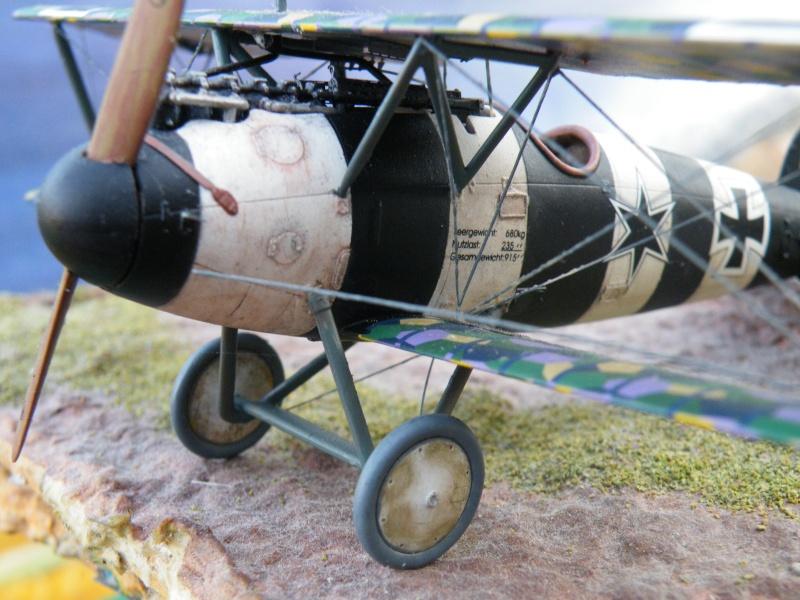 le vol de l albatros Dscf5114