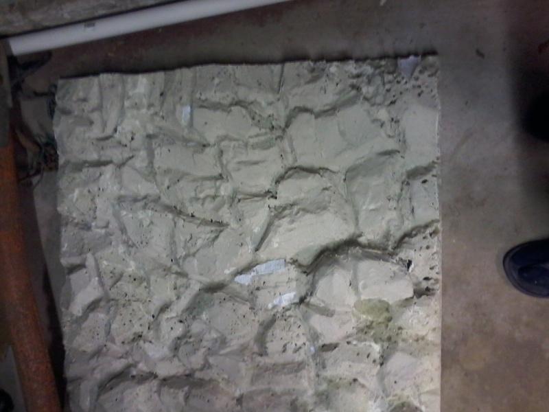 [help]terrarium sur mesure- Japalura splendida - Page 2 20140112
