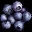 4/CONSEILS UTILES Fruit_10