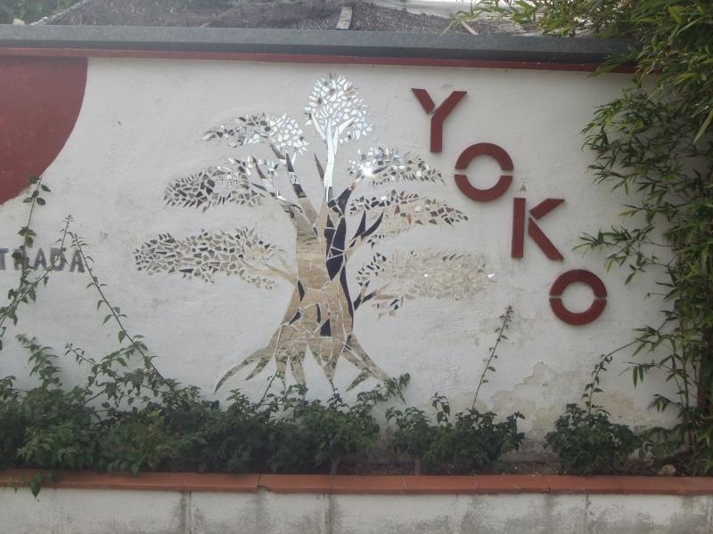 Viaje a Yoko y Mistral 20510