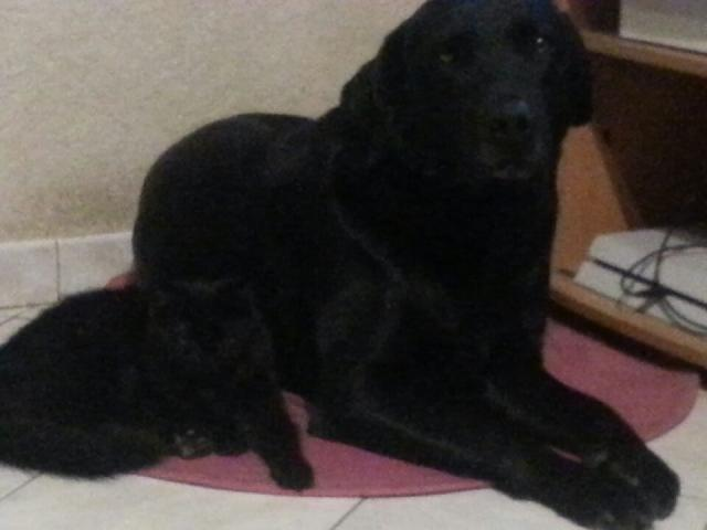 Kitty et Jessy Photo_17