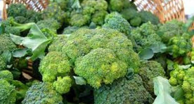 Germogli di broccoli un'arma contro il cancro al seno 20150112