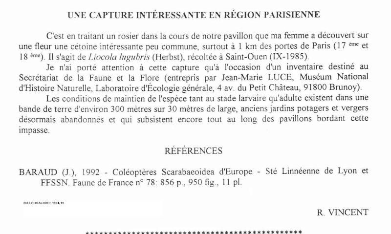 [P. (Liocola) lugubris] Une belle trouvaille !! - Page 2 Liocol10