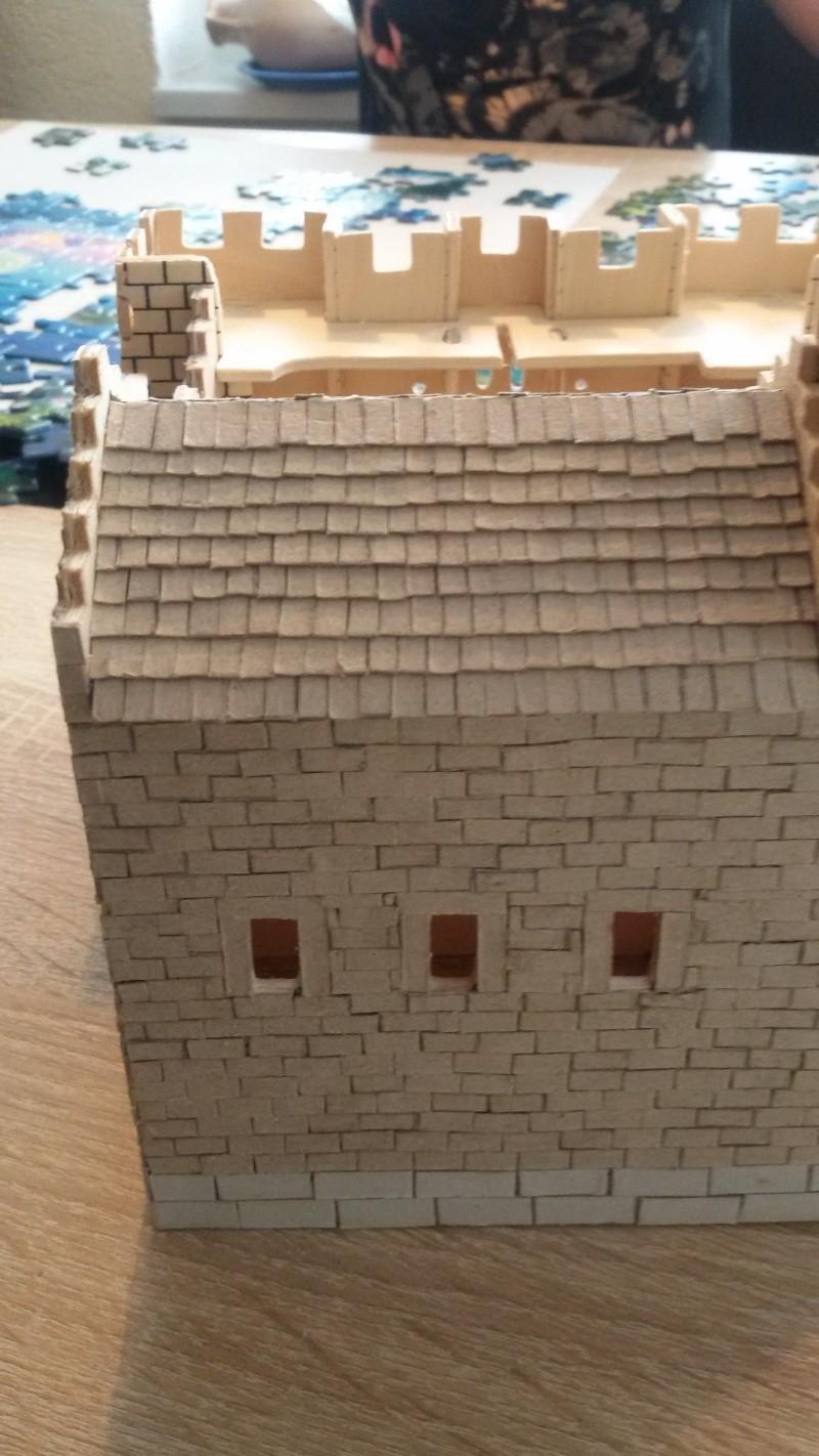 Burg aus Holz zur kompletten Überarbeitung - Seite 2 20150211