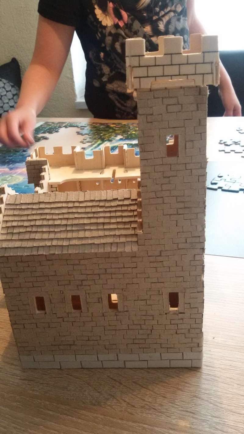 Burg aus Holz zur kompletten Überarbeitung - Seite 2 20150213