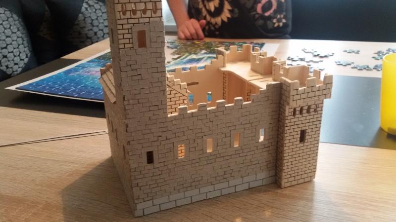 Burg aus Holz zur kompletten Überarbeitung - Seite 2 20150214