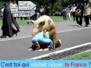 [Concours]  Les couleurs de la France - Page 5 Cochon10
