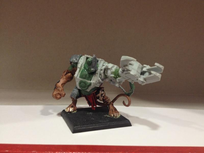 les rats du clan roukmout Img_0910