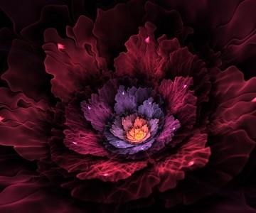 Flore Fleur_10