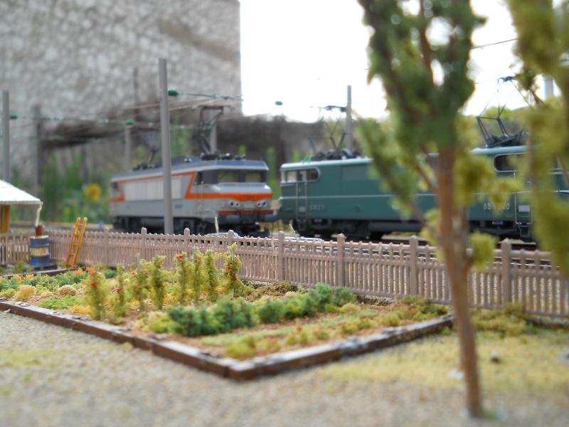 Châteaulieu Dscn0312