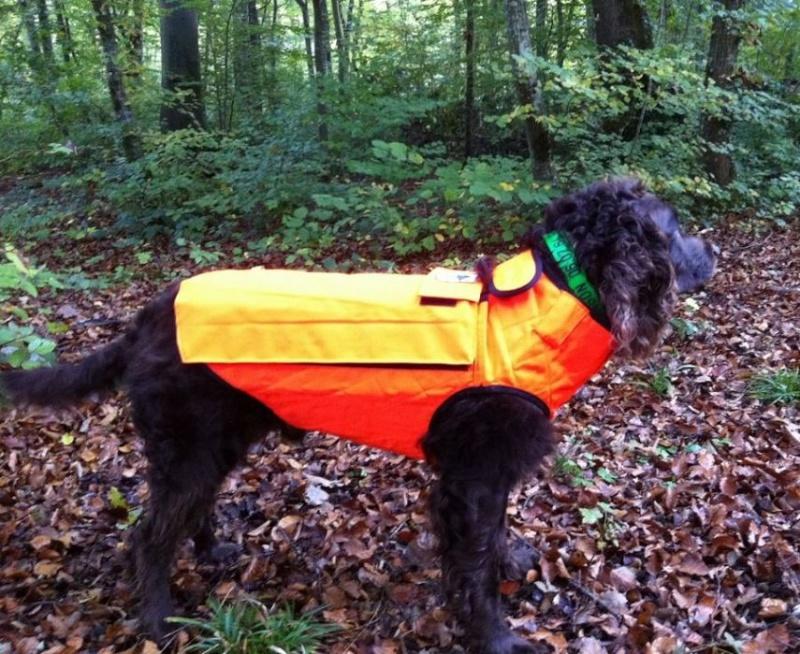 protections pour le poitrail du chien Gilet_10