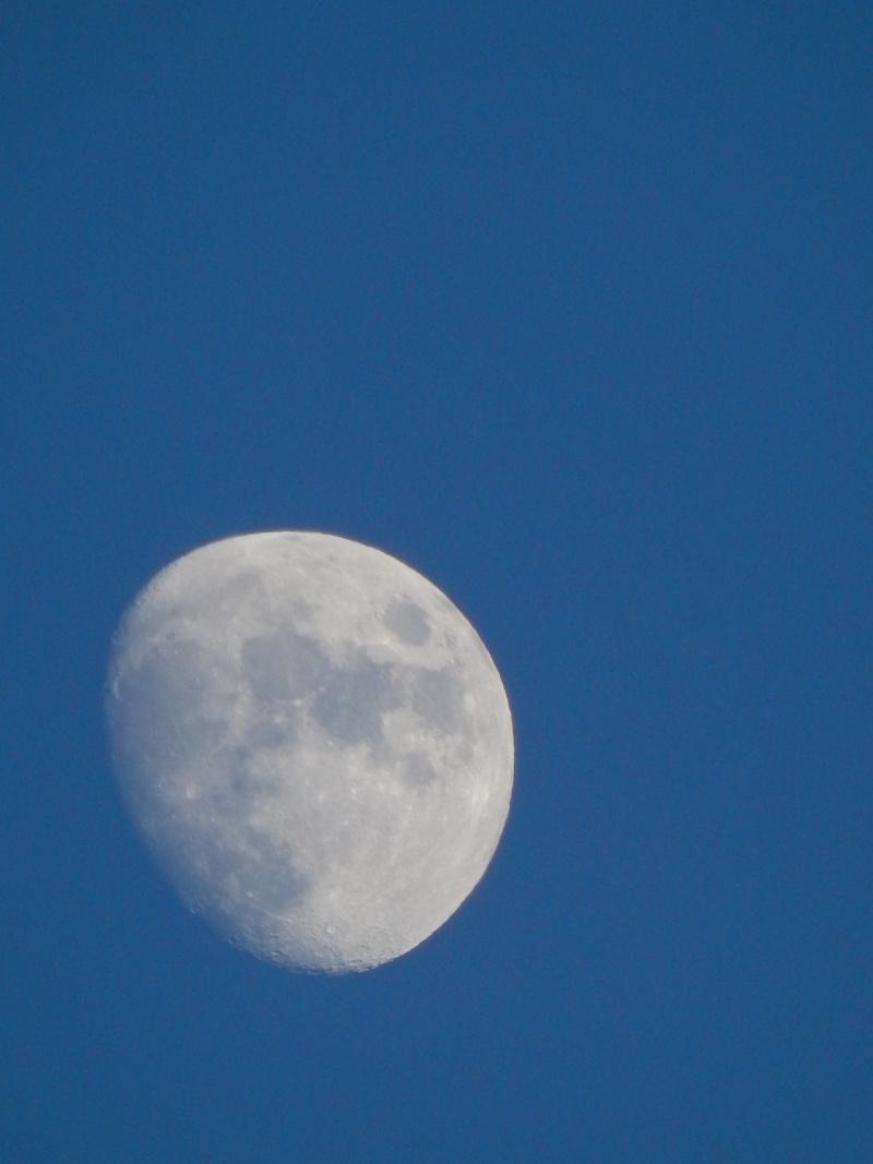 Lune croissante (et non ascendante) Dscn0110