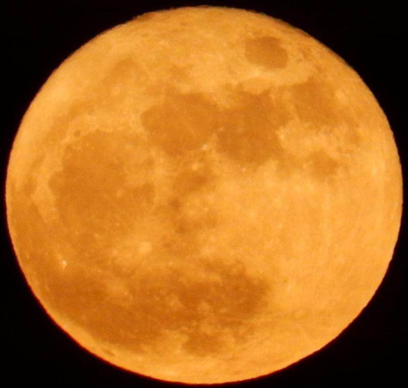 Pleine lune (ou presque, décroissante d'une 1/2 journée) Dscn0218