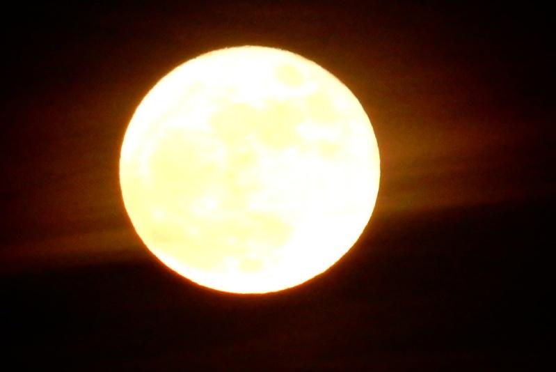 Pleine lune (ou presque, décroissante d'une 1/2 journée) Dscn0219
