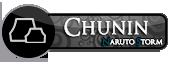 CHUNIN iwa