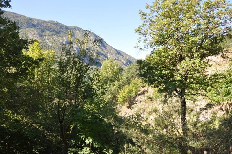 Camping Lacolle *** (Calme & Nature) Castellane 04 Vue_210