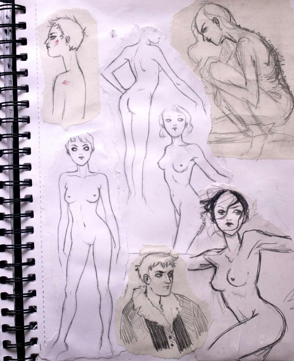-La Galerie d'Okhamii- - Page 7 Imgp8417
