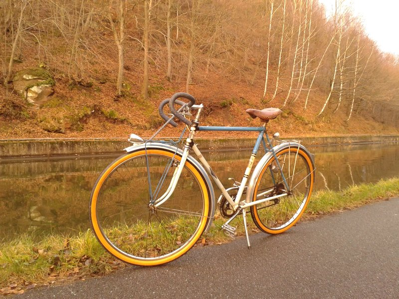Cycles Terrot  195?  20131210