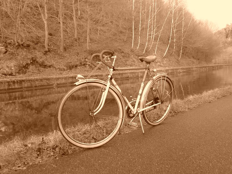 Cycles Terrot  195?  20131212