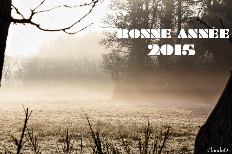 En route pour 2015 !! Bonne_10