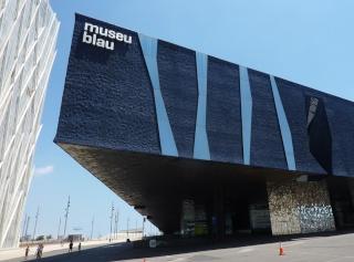 NOVA sortida diumenge 8-02-15 Museu Blau de Barcelona. Museo-11