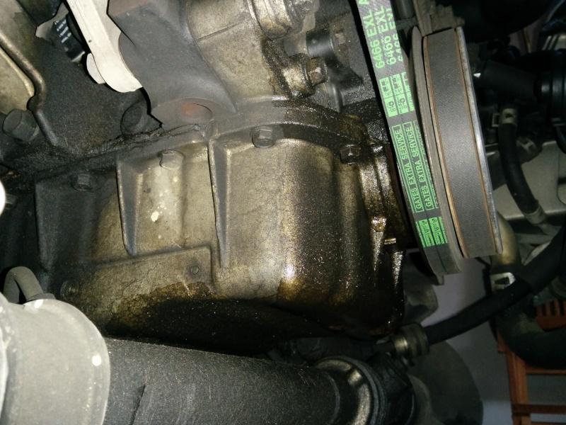 Pulizia olio preistorico nel vano motore Img_2015