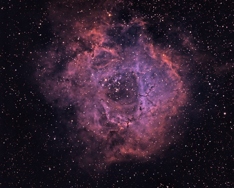 NGC2244 Rosette Nebula Mixsho10