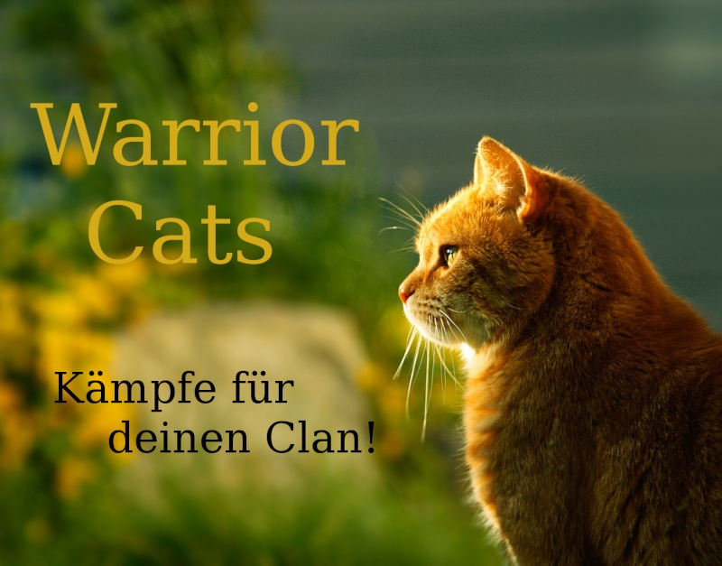 Warrior Cats Forum und RPG