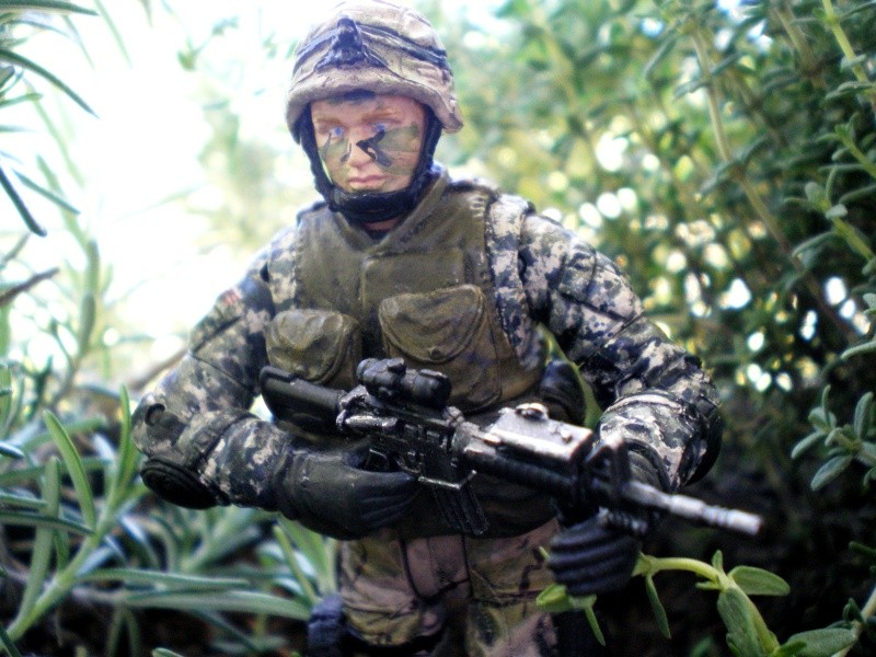 Selvaland, mes soldats en action - Page 9 Imgp2411