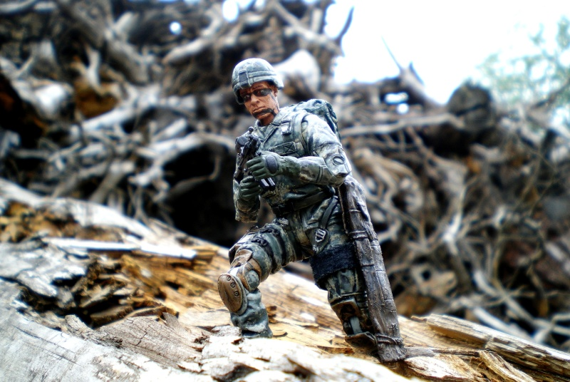 Selvaland, mes soldats en action - Page 5 Imgp3310