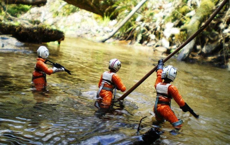 Selvaland, mes Star Wars en action - Page 5 Imgp7811