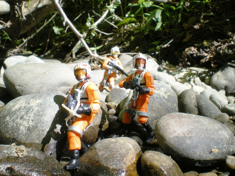Selvaland, mes Star Wars en action - Page 5 Imgp8013