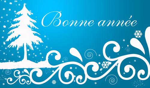 mes puces vous souhaitent une bonne année Bonne-11