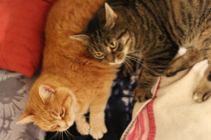 Lili et Jila Img_0215