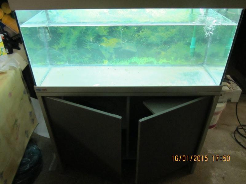 Aquarium 180l Eheim  Img_1422
