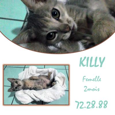 Killy 2 mois Killy-10