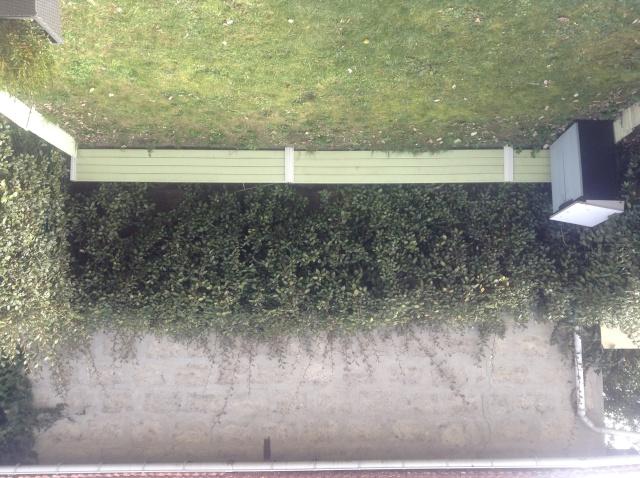 Aide pour petit jardin de 25m2 Photo_13