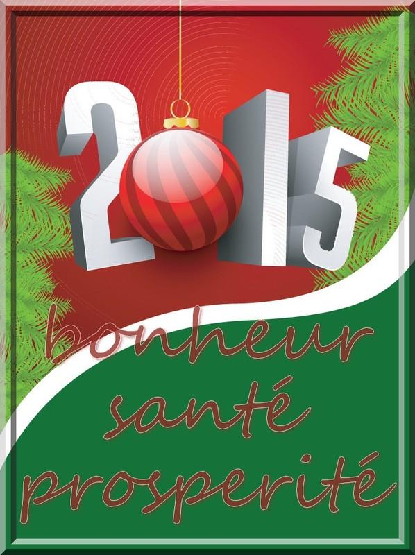 Bonne année 2015 à tous !!!!!  Ae210810