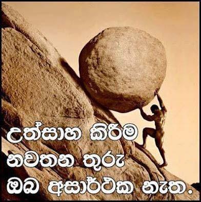 Is Rajapaksa facing defeat in Sri Lanka elections? 16015510