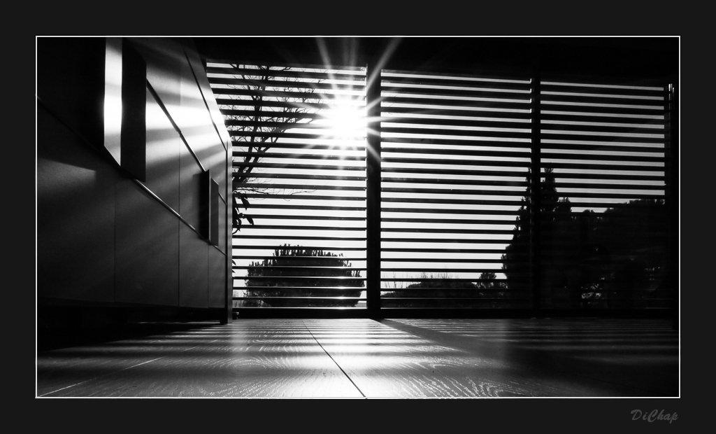 Soleil+Brise-Soleil=Photo P1040012
