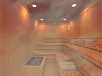 CR balade du dimanche 08 février 2015 Sauna10