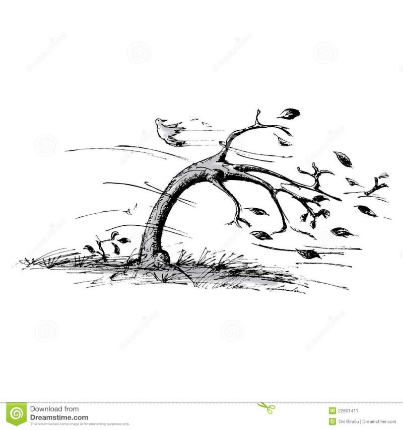 Un mot pour définir une image Tree-w10